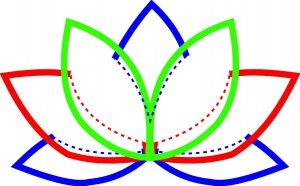 Applikation Schema Lotus